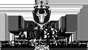 logo-zimbru